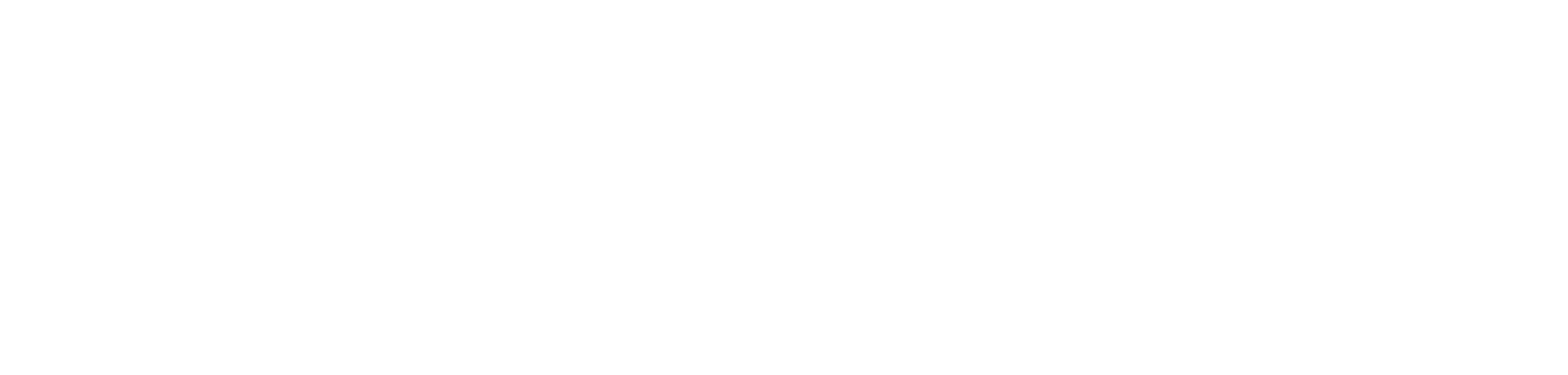 LeagueApps Logo White